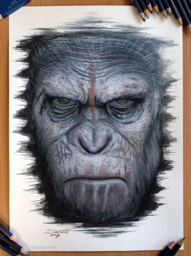 realistic pencil drawings of a gorilla